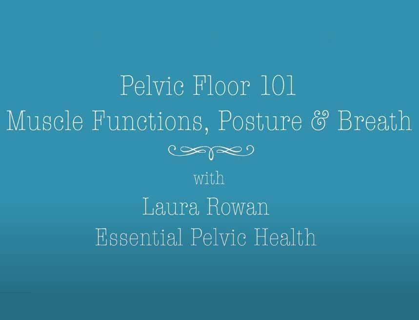 Pelvic Floor 101 Functions,Posture, Breath EPH